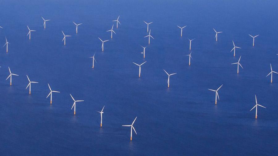 Triton Knoll windfarm © High Level/Rex/Shutterstock