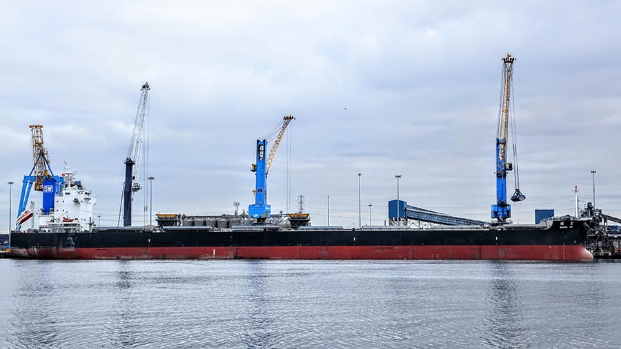 The Brasil SW (pictured) is on its way to taking 65,999t of barley to Saudi Arabia.