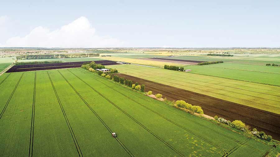 Farcet Farms