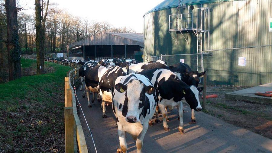Crouchland Farm