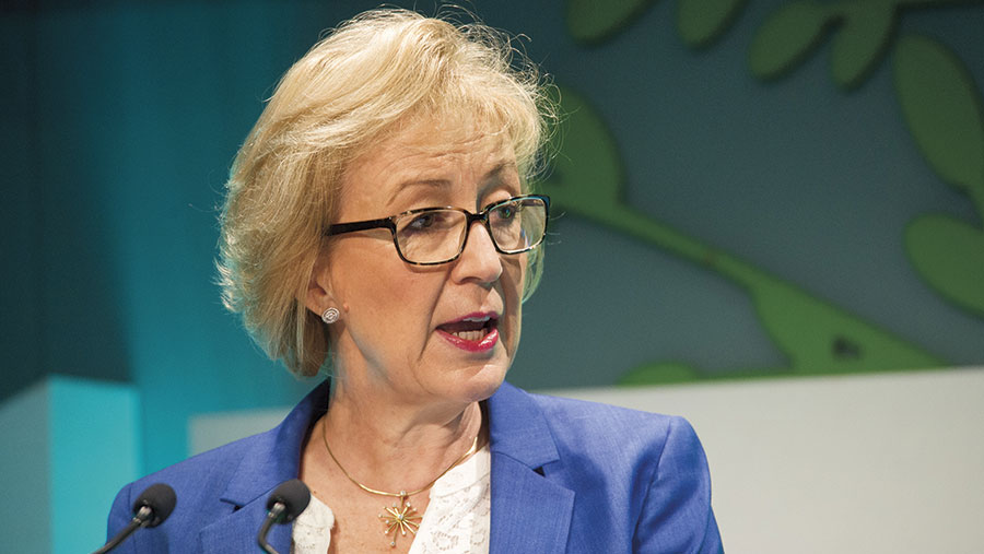 © Andrea Leadsom