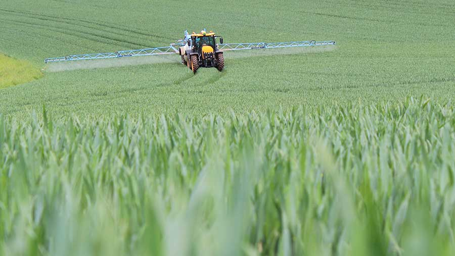 Spraying T2 fungicide in wheat © Oli Hill