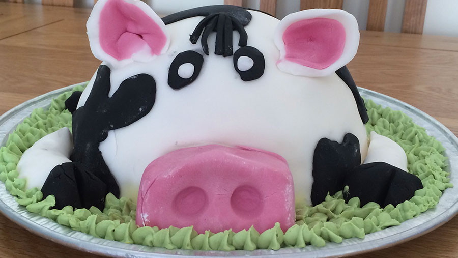 Kate Harrower's cake