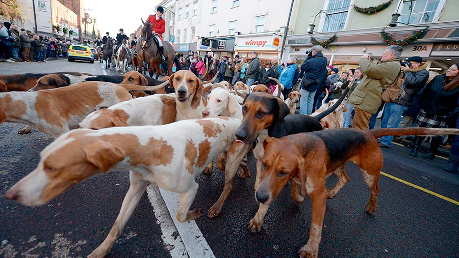 Members of the Essex Farmer and Union Hunt   © Martin Dalton/REX/Shutterstock