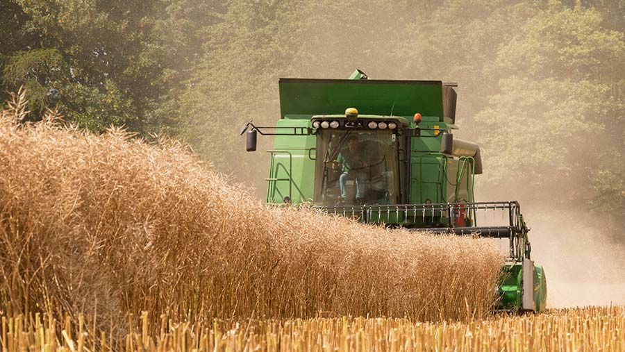 Photo of Phil Metcalfe's Hillmaster combine at work on a crop of Anastasia oilseed rape posted in by Midpho