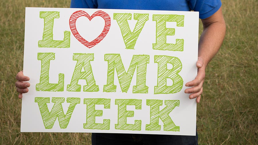 © Love Lamb Week