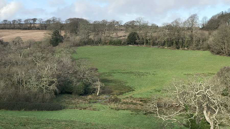 Tresemple Farm