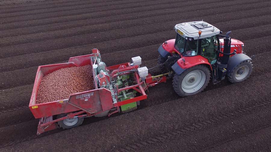 Modified potato planter