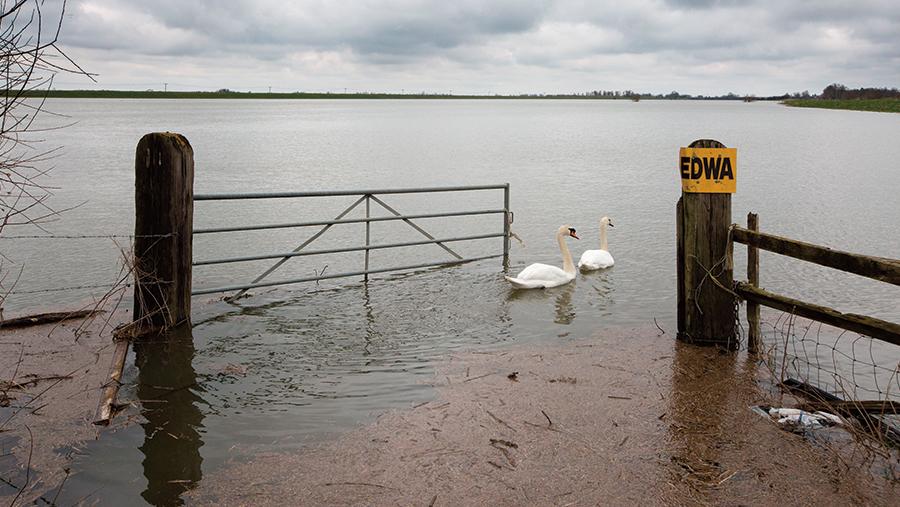 Flooding in Cambridgeshire. © Geoff Robinson / REX Shutterstock