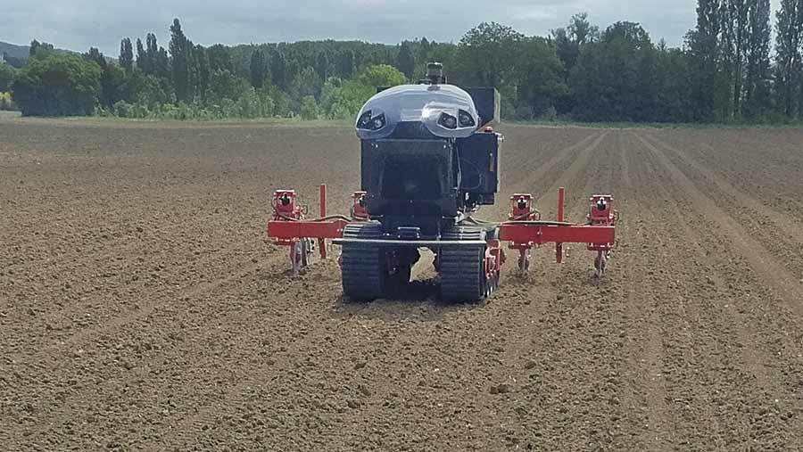 Autonomous robots drill a 50ha maize crop