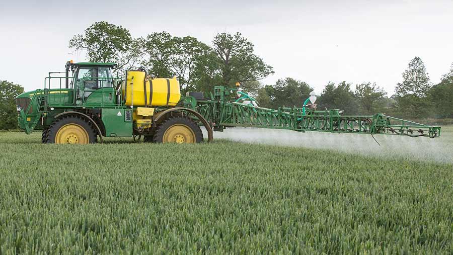 Sprayer in wheat
