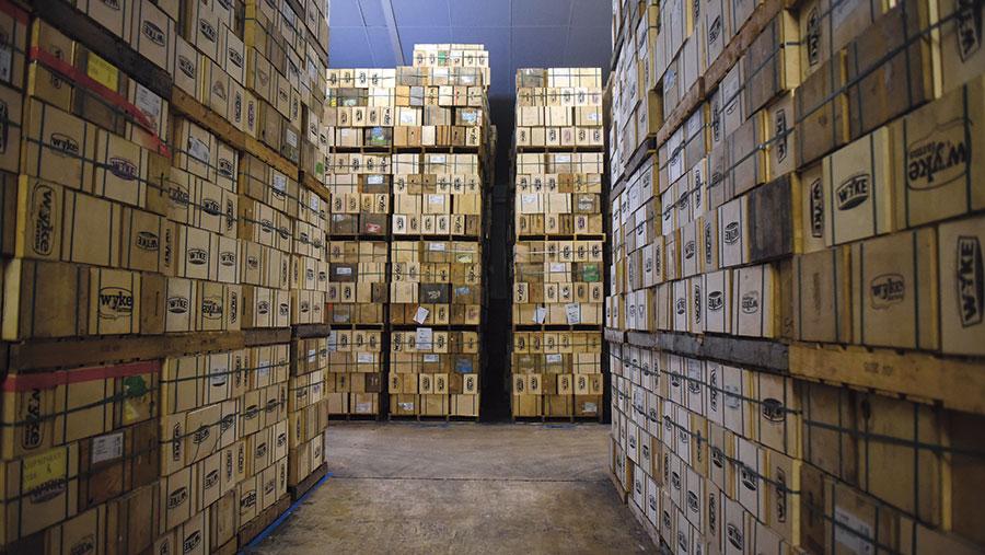 Maturing store © Mary Turner/Bloomberg