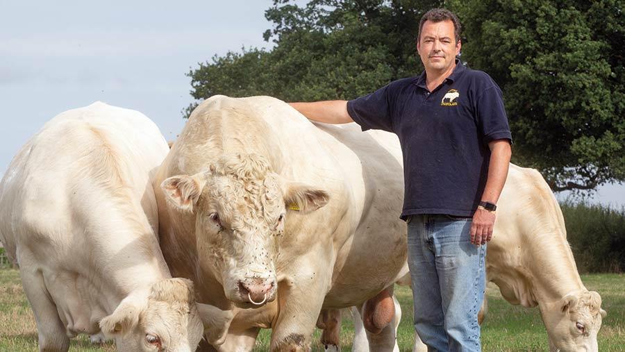 Ben Hartman with a bull