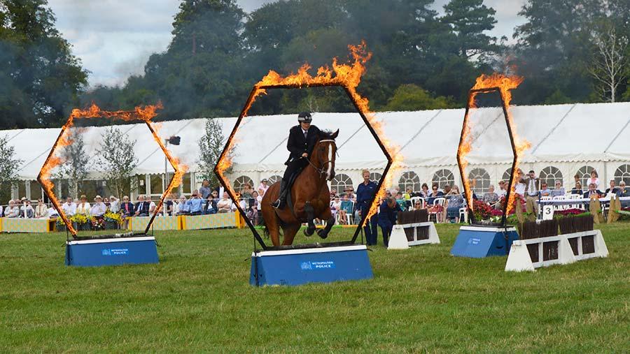 Metropolitan police show jumping © Hayley Parrott