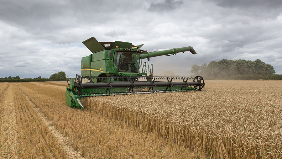 Harvesting winter wheat