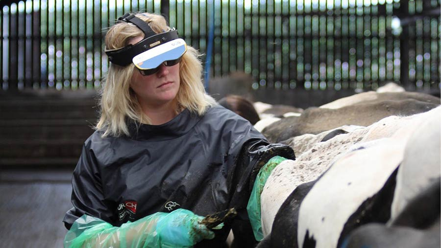 Farm vet Rebecca Cavill