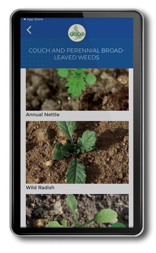 PGRO Pea & Bean Guide app