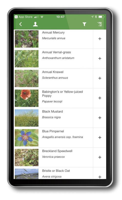 Wild Flowers app