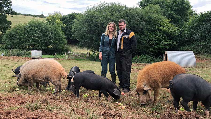 Amelia Millman and Jason Greenway with their pigs © Oli Hill/RBI