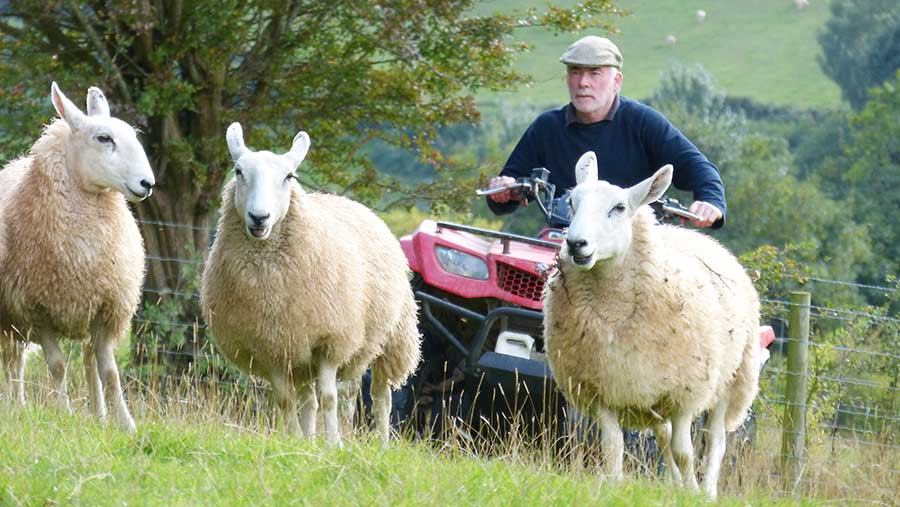 Gareth Jones on a quad bike with sheep on the farm