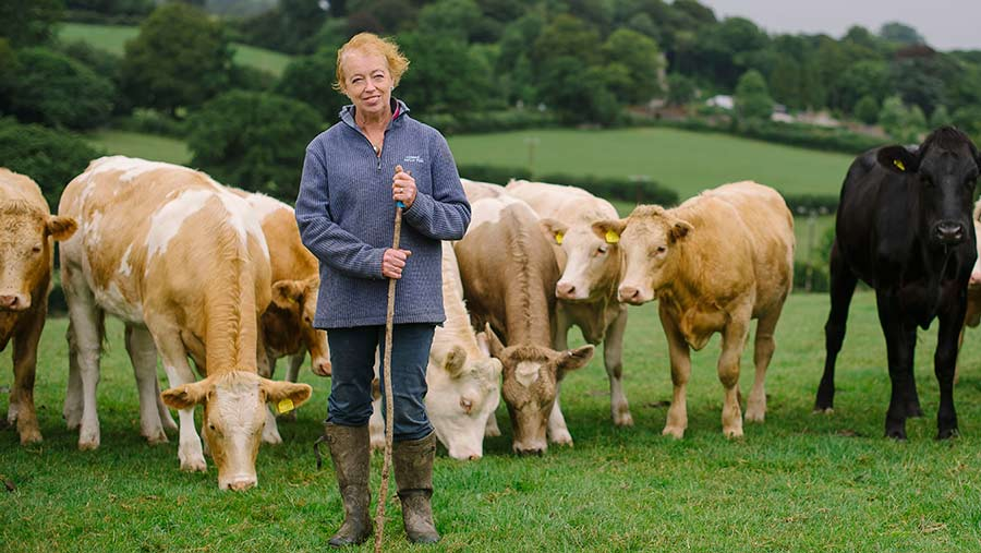 Sylvia Crocker  standing in a field with cows