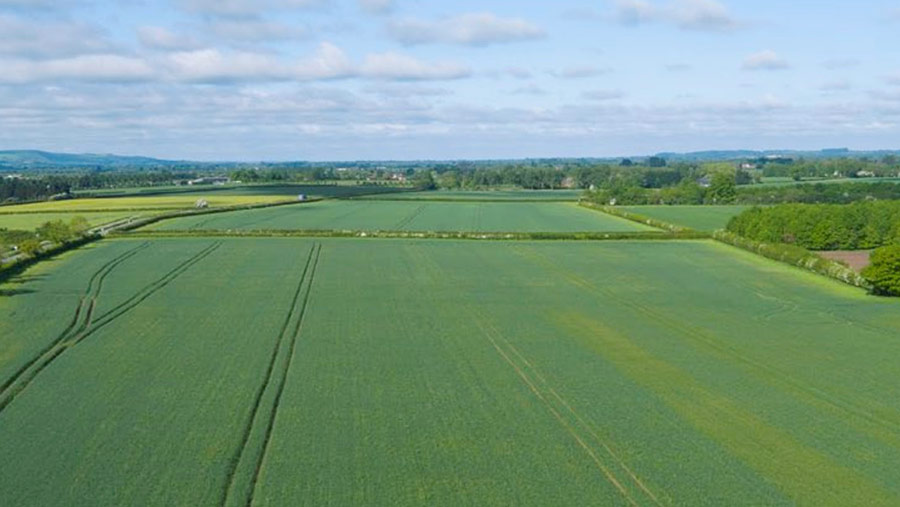 A aerial view of a green field