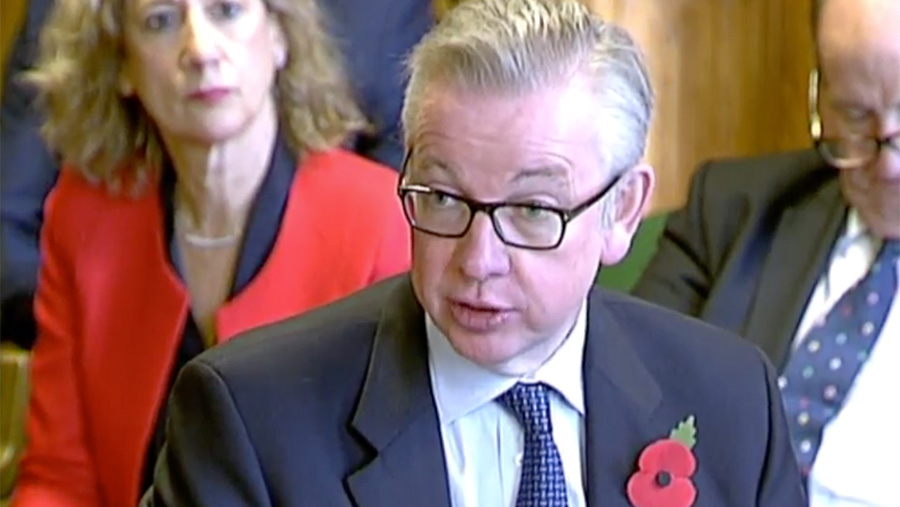 Michael Gove speaking to Efra © Parliament TV