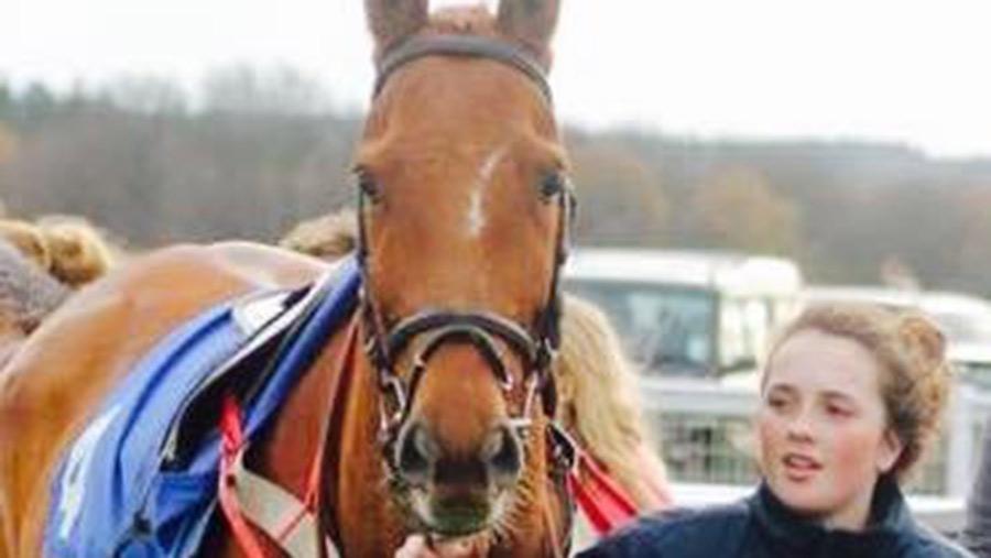 Lauren Scott was a horse catcher at Newton Abbot racecourse © Irving of Exeter