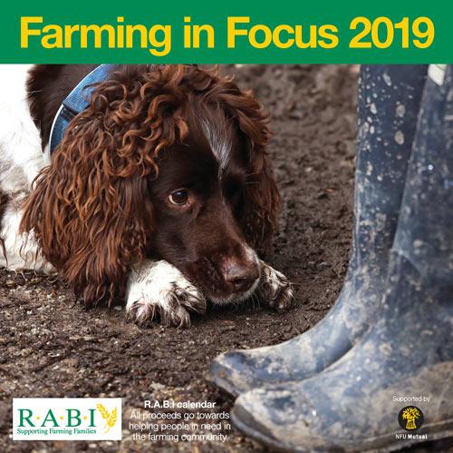 The RABI 2019 calendar