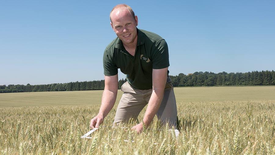 Craig Livingstone in a wheat field