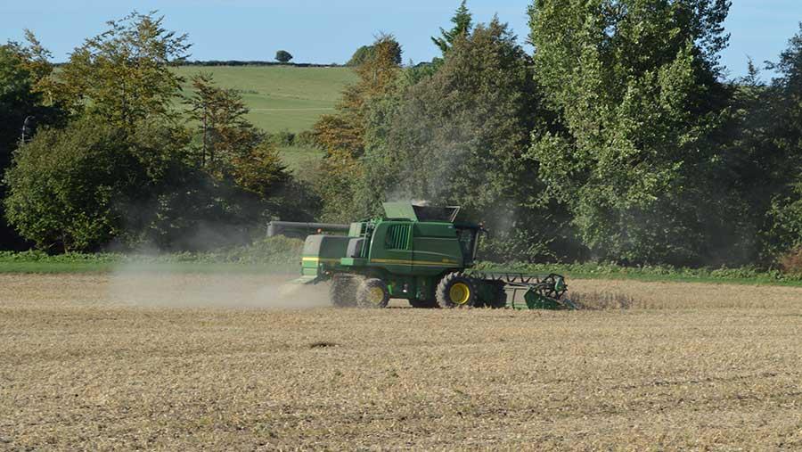 Soya being harvested in Dorset