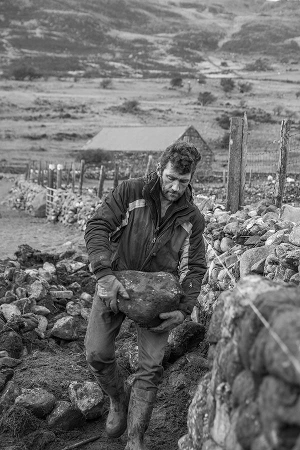 Mari Lloyds dry stone walling