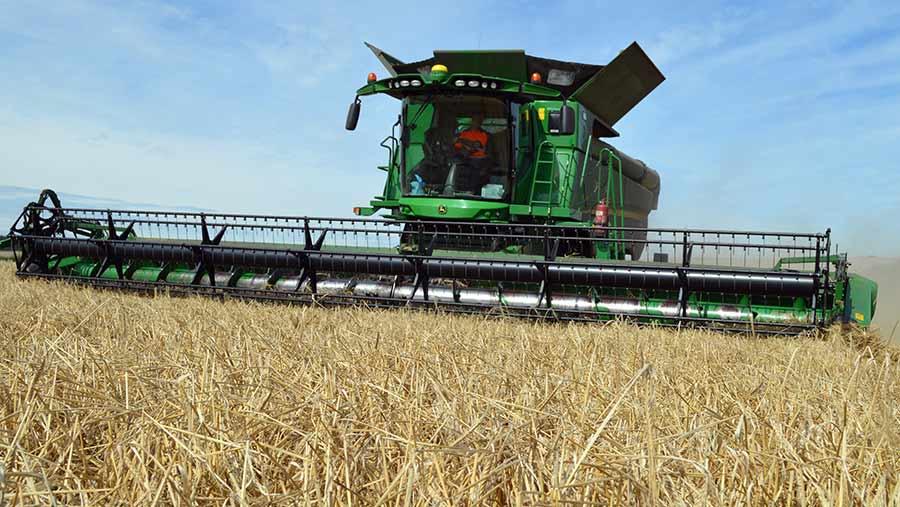 A combine harvesting Laureate spring barley