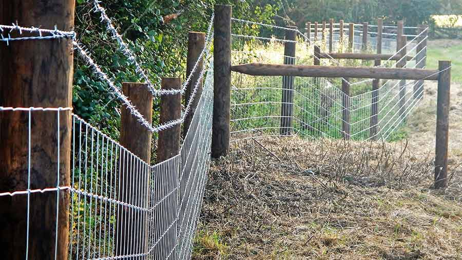 Good-quality fencing