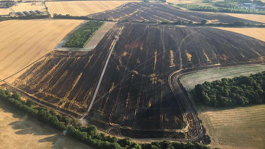 Aerial view of a burnt field