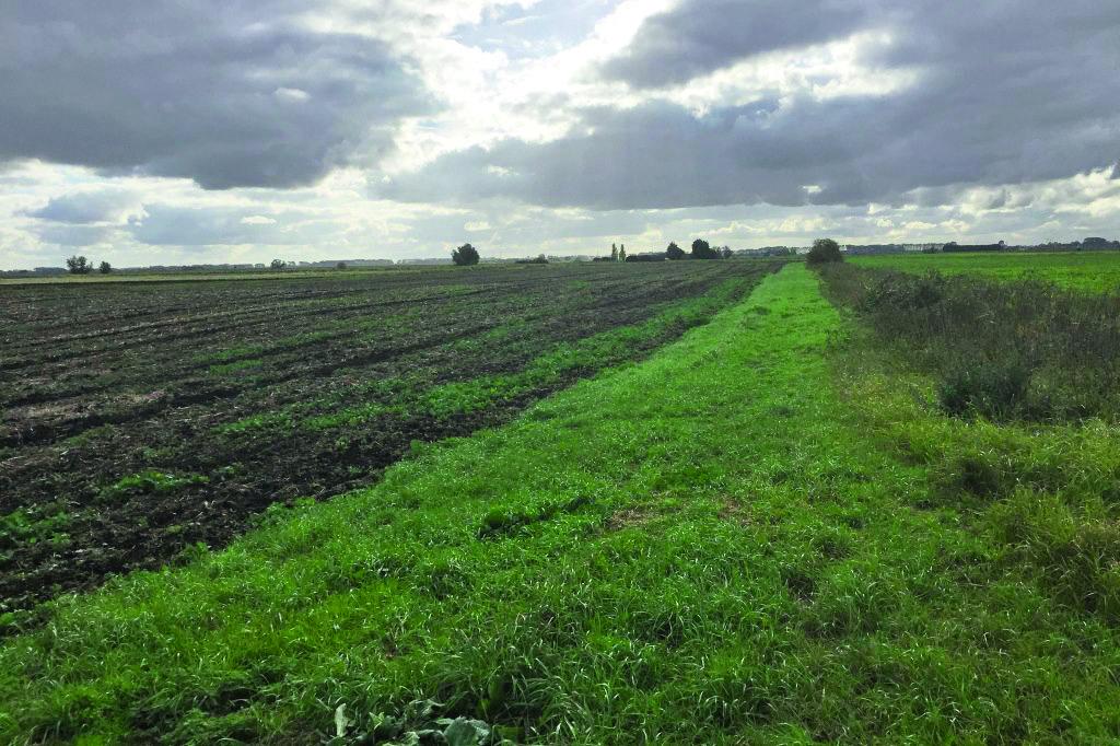 ashcroft farm