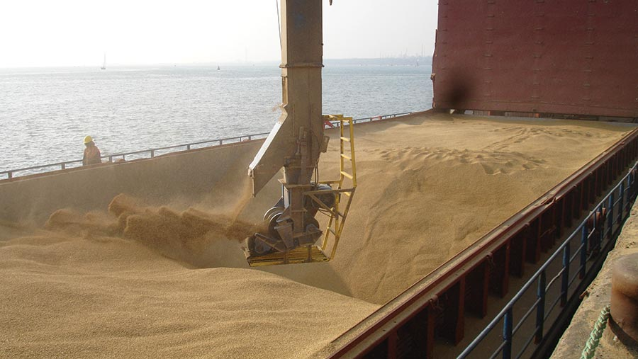 Propino spring malting barley bound for Antwerp is loaded at Southampton Grain Terminal for Robin Appel