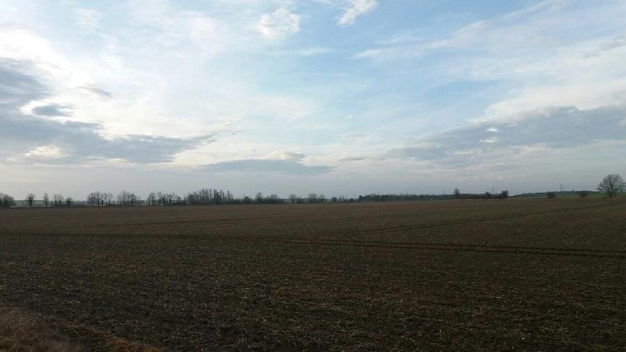 Field on Larkhall Farm