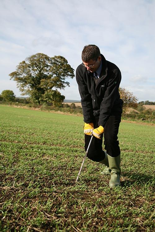 Man taking a soil sample