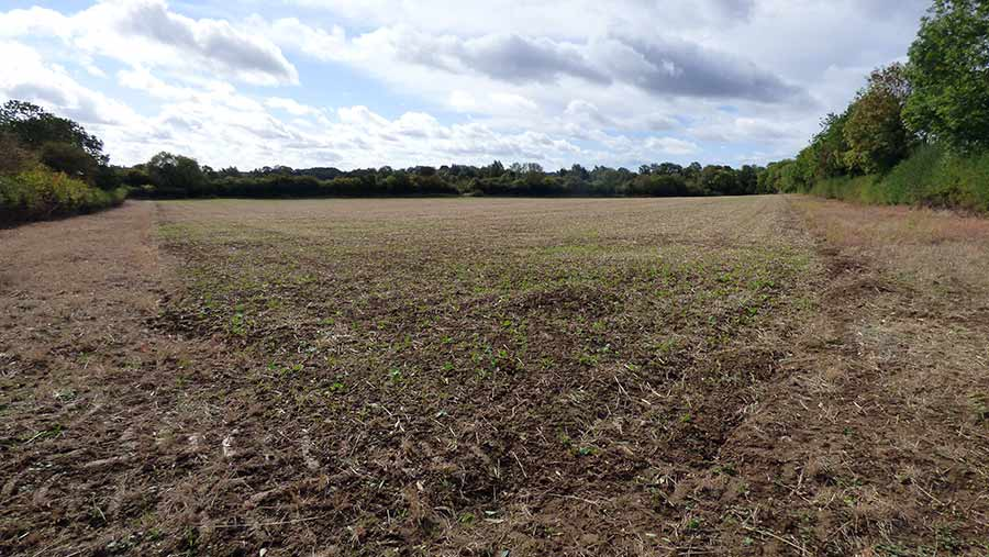 Howkins & Harrison sold 21 acres at Welton in Northamptonshire by auction and has set up a contracting agreement for the seller to keep farming the land