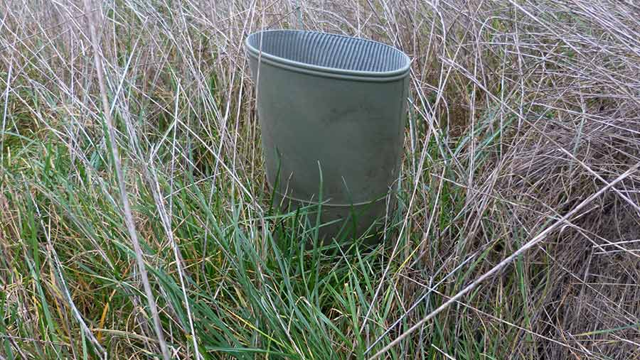 An empty welly shows the depth of grass in a field