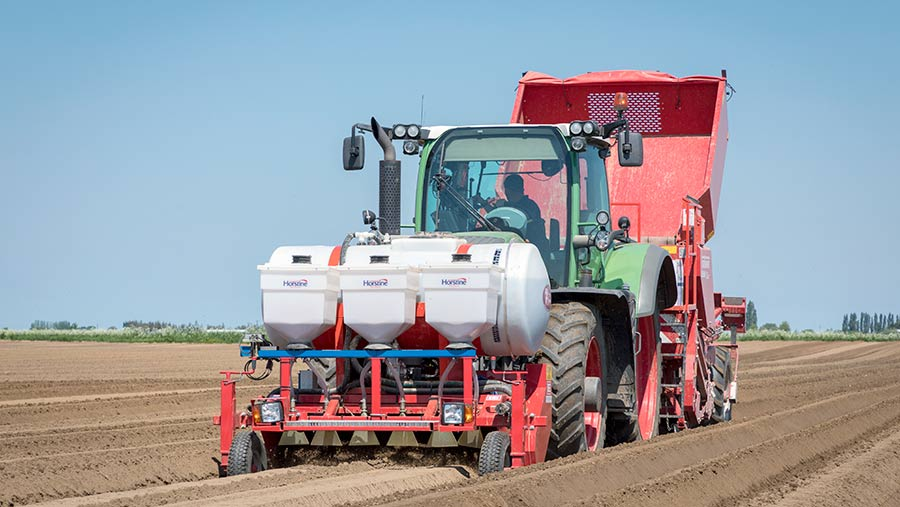 Planting potatoes with a nematicide