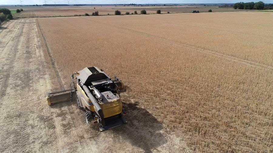 """Andrew Branton says combining soya is like """"shaving the soil"""""""