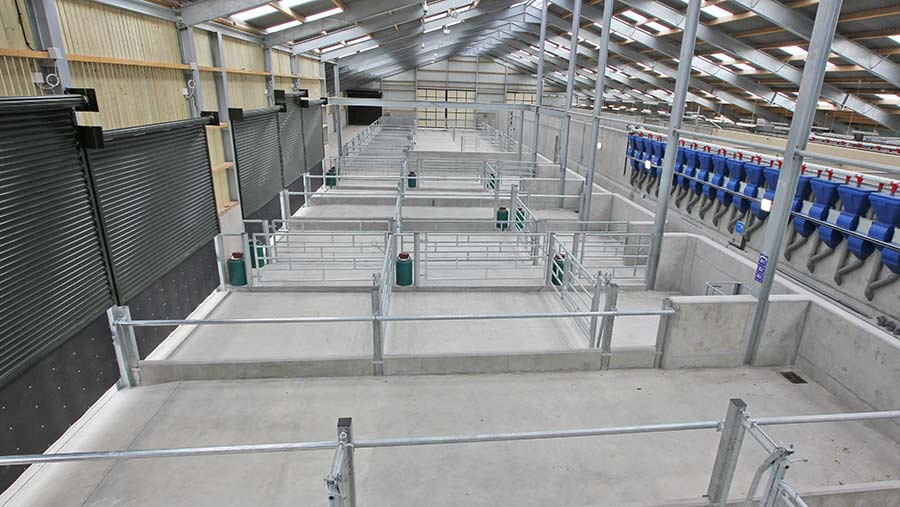 The new maternity wing at the Cafre dairy unit