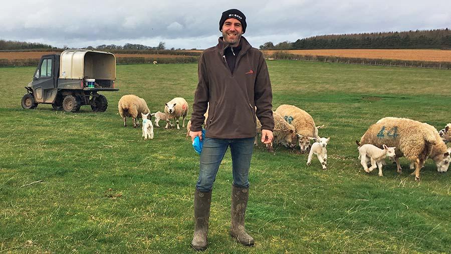 Adam Madge in field of sheep © Oli Hill/RBI