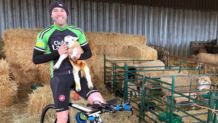 Adam Madge in lambing shed © Oli Hill/RBI