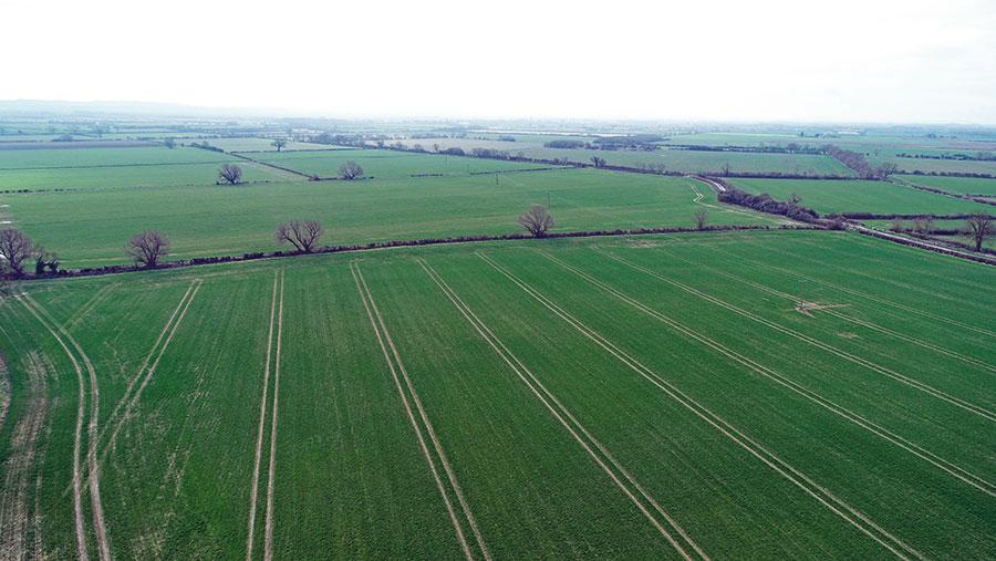 Trafford Farm land © Lincolnshire Agricultural Society