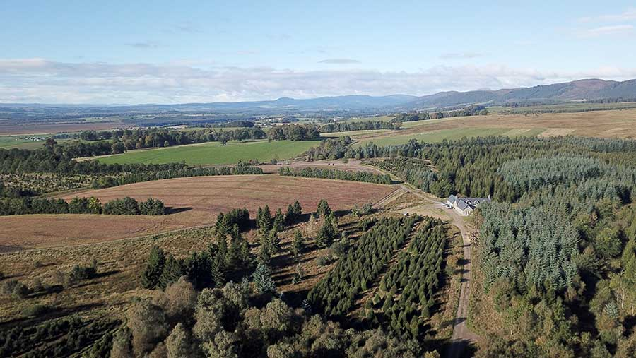 Aerial view of wooded estate