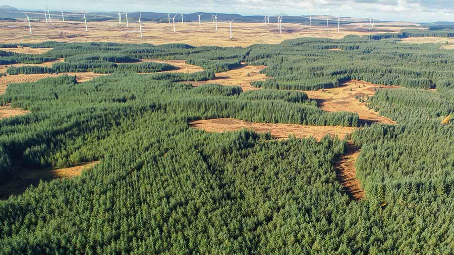 Aerial view of estate with dozens of wind turbines