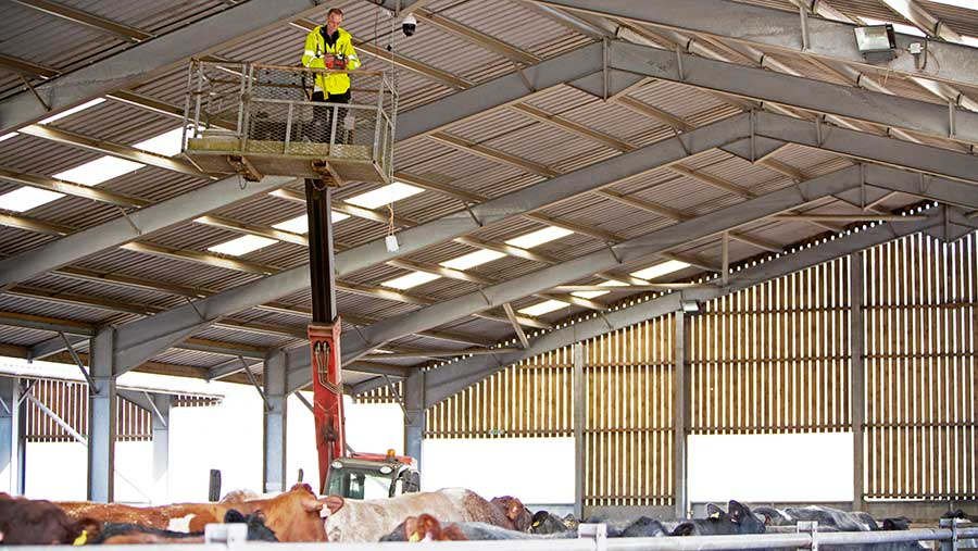 The smaXtec repeaters are positioned above cow pens at housing